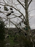 Image for Shoe Tree - Brookville, IN