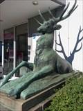 Image for Sitting Deer - Stuttgart-Vaihingen, Germany, BW