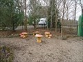 Image for Mushroom Stools - University Park, Pennsylvania