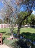 Image for Nancy Ciuffo Ciulla  -  Oceanside, CA