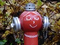 Image for Red Fire Hydrant - Leipzig, Saxony, Germany