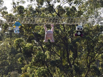 Pranksters had placed these stuffed toys on this Arboreal Crossing last year. 0849, Monday, 10 April, 2017