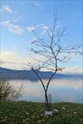 Image for Jessie Tyndall and Dorothy Morrison - Naramata, British Columbia