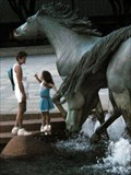 Image for Mustangs of Las Colinas - Irving, TX