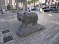 Image for Schwarzer Bär / Black Bear - Hannover, Germany, NI