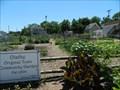 Image for Olathe Old Town Community Garden - Olathe, Ks.