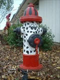 Image for Dalmatian Fire Hydrant