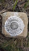 Image for MW0226 - USC&GS 'W 602' BM - Modoc County, CA