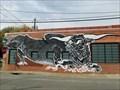 Image for Bull - Dallas, TX
