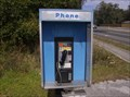 Image for Pay Phone - Gainesville, Florida
