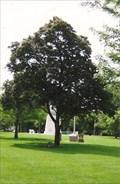 Image for George Washington - Winfield, KS