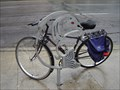 Image for ROM Fish Bicycle Tender