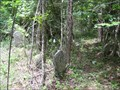Image for Pierson Cemetery near Bellamy in Scott County, Virginia.