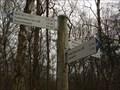 Image for Hiking Trail Arrows around Liblarer Lake, Südlich Liblarer See, Erftstadt - NRW / Germany