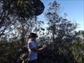 Image for Goonook trig, Koppin Yarratt Forest, NSW