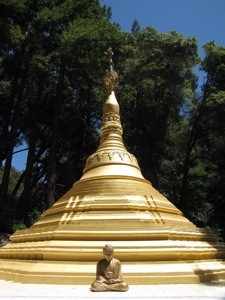 linn creek buddhist dating site Buddhist dating site, buddhist personals, buddhist singles, buddhist chat - free online dating free buddhist dating site.