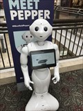 Image for Robots greet Westfield mall shoppers in San Francisco, San Jose