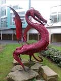 Image for Dragon - Ysbyty Ystrad Fawr - Ystrad Mynach, Wales.