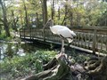 Image for Free-Flight Aviary  -  Davie, FL