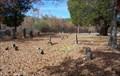 Image for Union Cemetery - Langston, AL