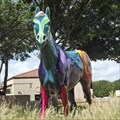 Image for Painted Horse - Wichita Falls, TX