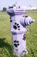 Image for Friends Forever Dog Park Hydrant - Freeport, IL