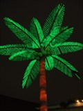 Image for Electric Palm at Tiki Jim's - Broadway at The Beach  -  Myrtle Beach, SC