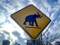Image for Woolly Mammoth Crossing - Ottawa, Ontario