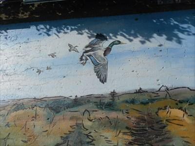 Automne et les canards