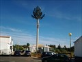 Image for Pine Cell Tower - Santa Luzia, Portugal