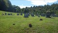 Image for Gillenwater Cemetery ~ Midway Community, Virginia