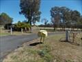Image for Emu - Coonabarabran, NSW
