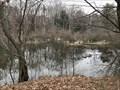 Image for Hemlock Crossing Scenic Overlook #8 - West Olive, Michigan