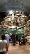Image for Bass Pro Shop Waterfall Fountain - San Jose, CA