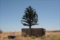 Image for Fake Tree Cell Tower - Antioch, CA