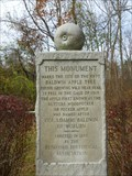Image for Baldwin Apple Monument - Wilmington, MA