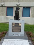 Image for Mattie and Subsequent Accelerant Detection Canines - - Windsor Locks, CT