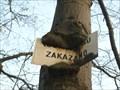 """Image for """"Koupání psu zakázáno"""" Sign-Eating Tree, Praha- Hostivar, Czech republic"""