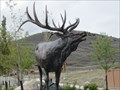 Image for Elk  - Herriman, Utah