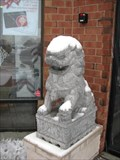 Image for Hollywood Blvd Lions - Woodridge, Illinos