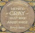 Image for Henry Gray - Wilton Street, London, UK