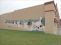 Image for Midwest Horses - Seminole, OK