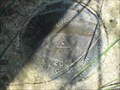 Image for WIDT 1J23 2002, Wisconsin