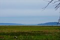 Image for Nisqually Delta Overlook - Nisqually National Wildlife Refuge