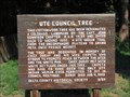 Image for Ute Council Tree - Delta, CO