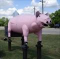 Image for Big Pink Pig Smoker - Lake Dallas, TX