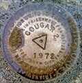 Image for Cougar 2 Triangulation Mark - Sandpoint, ID