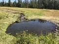 Image for Polecat Springs - Moran, Wyoming