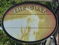 Image for Goat - Sopwell Lane, St Albans, Hertfordshire, UK.