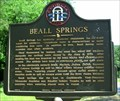 Image for Beall Springs-GHM-149-5-Warren Co